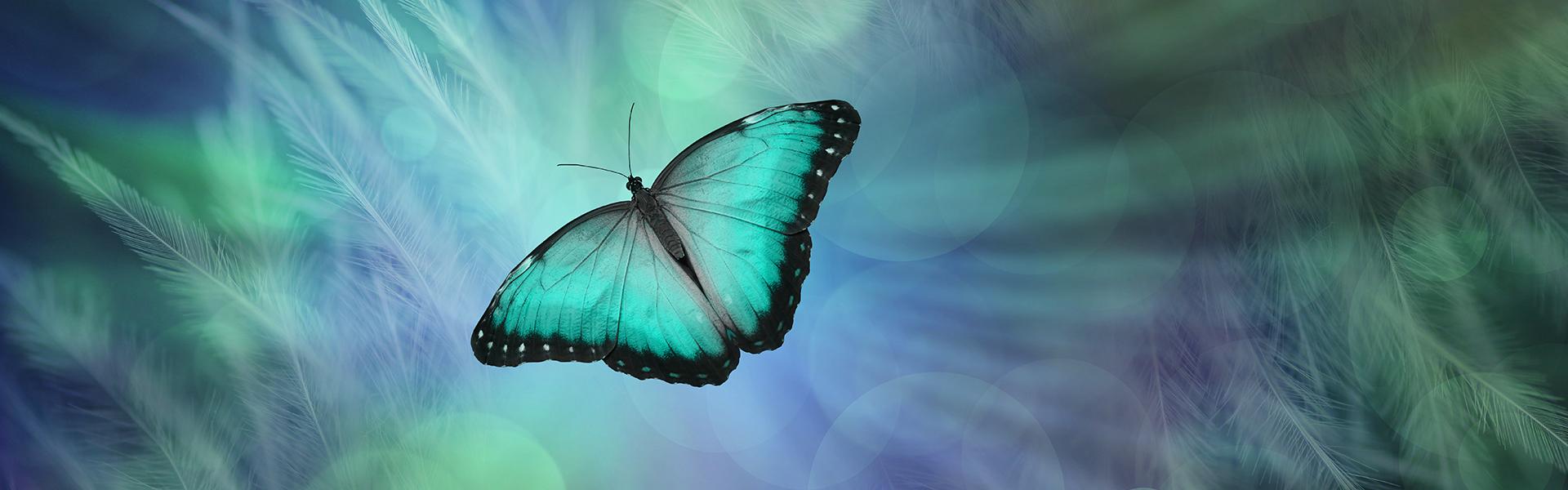 blog-charlyn-spitzer-psychic-medium-services